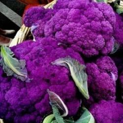 Cauliflower Violetta Italia